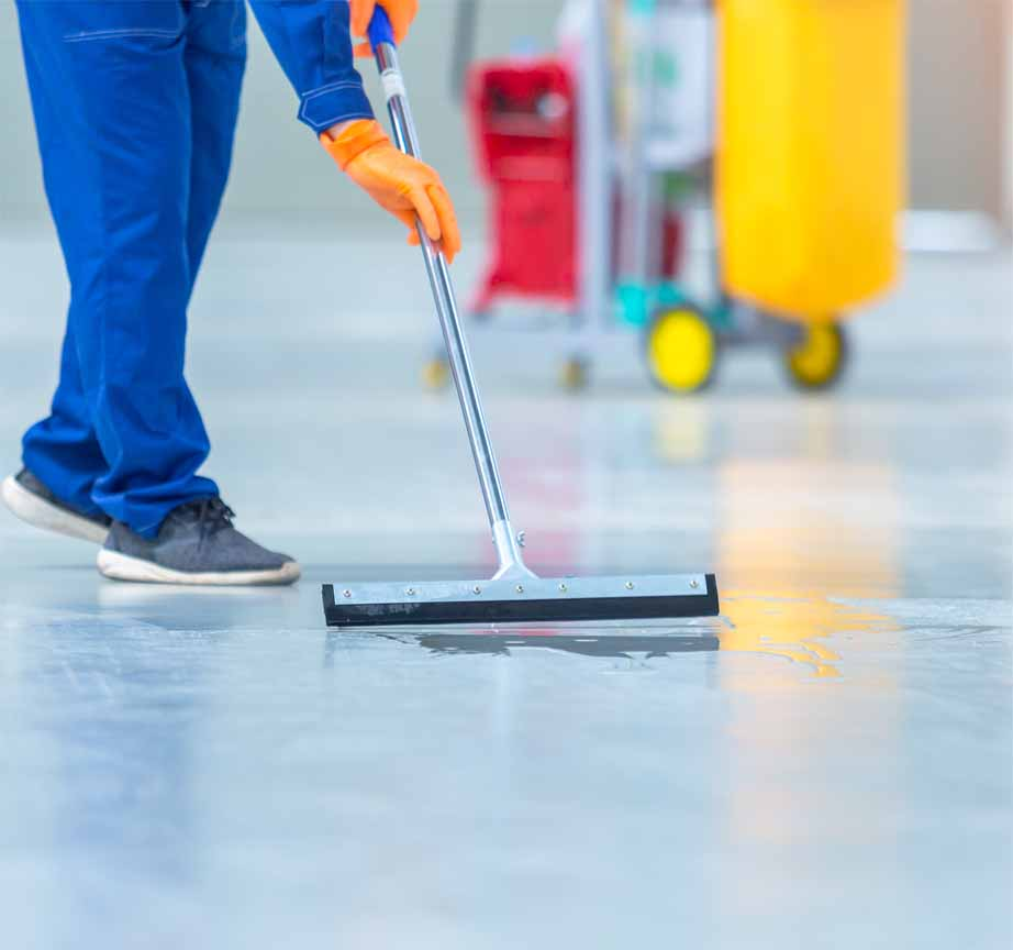 floor cleaning services | tile cleaning melbourne | hardwood flooring | carpet and tile cleaning